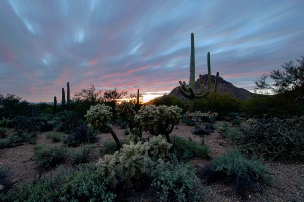Long Exposure in Arizona desert